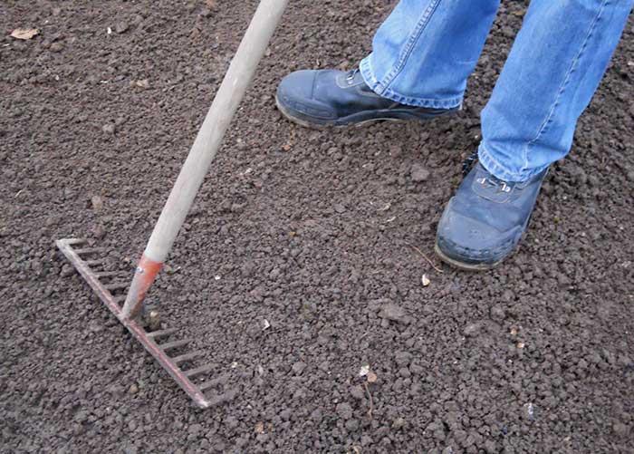 Preparer terrain pour gazon top preparer terrain pour gazon strasbourg decors photo galerie - Ou trouver du gazon en rouleau ...