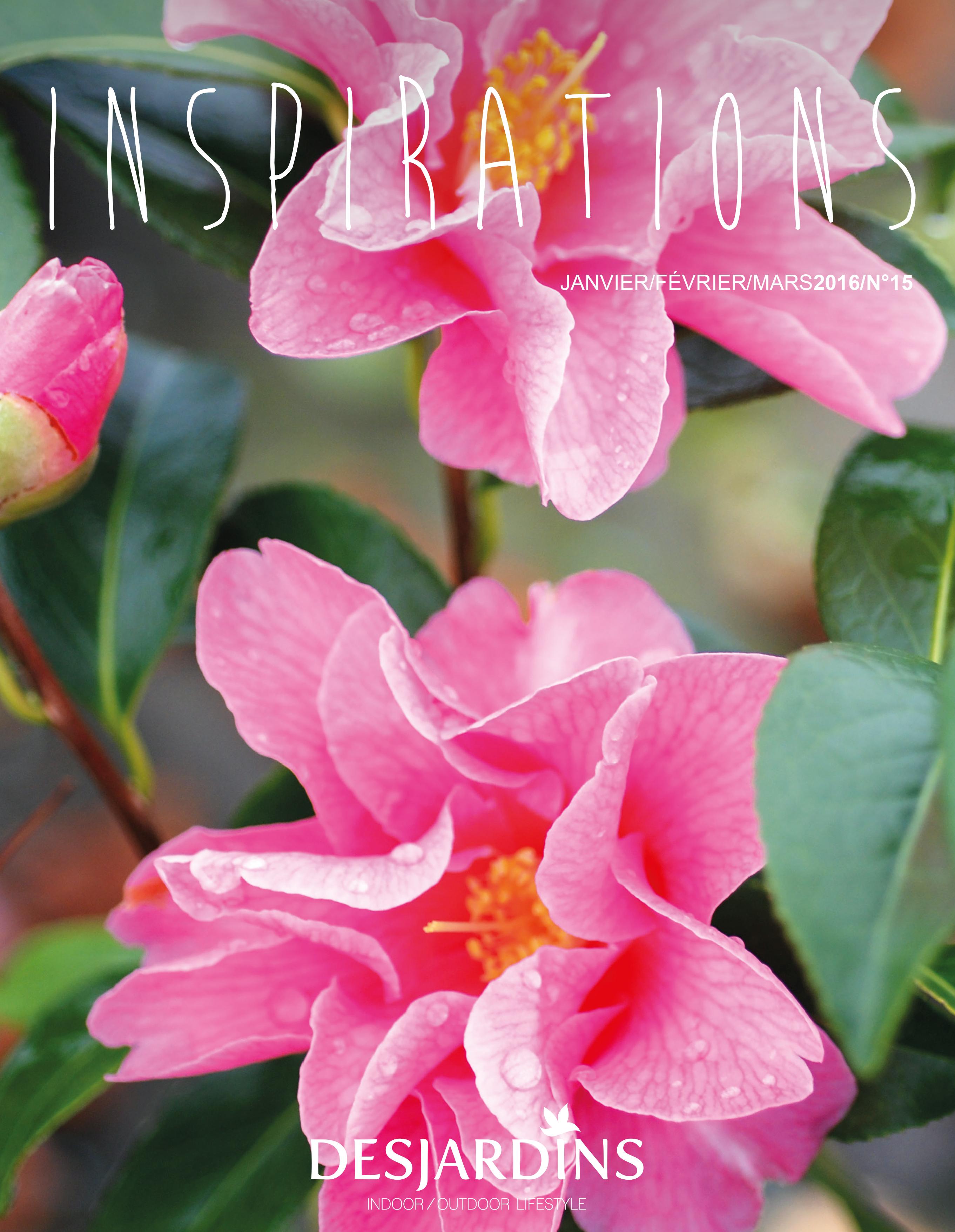 001_Desjardins-Inspirations_n15