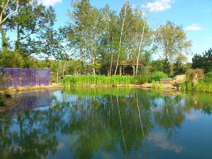 Leau Est Un élément Indispensable Au Jardin Un Bassin Grand Ou