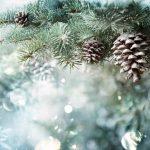 Sapin de Noël vert et floqués
