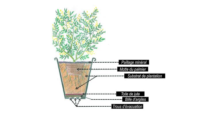 Comment faire un bon drainage dans un pot
